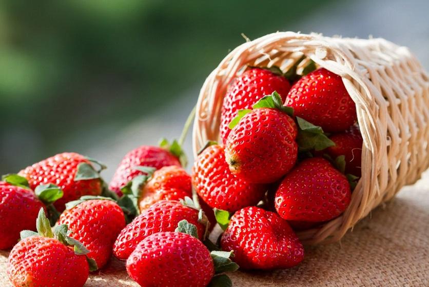 Клубника: польза и вред для здоровья самой вкусной ягоды