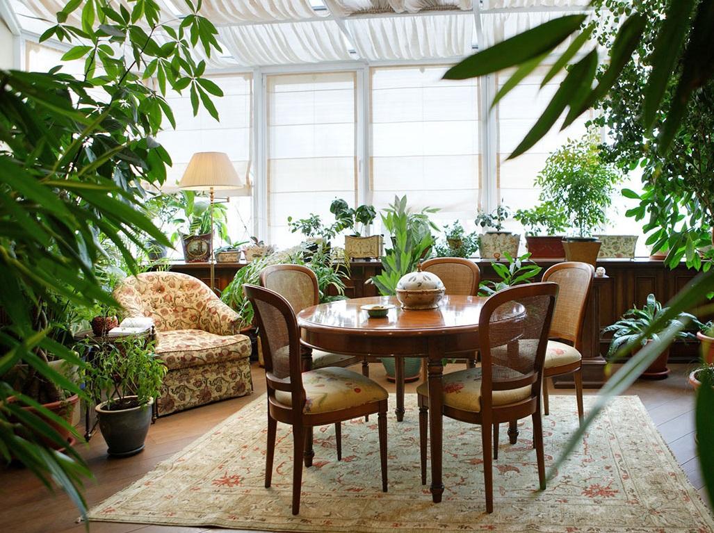 Комнатные растения в интерьере квартиры: какие цветы нужно посадить