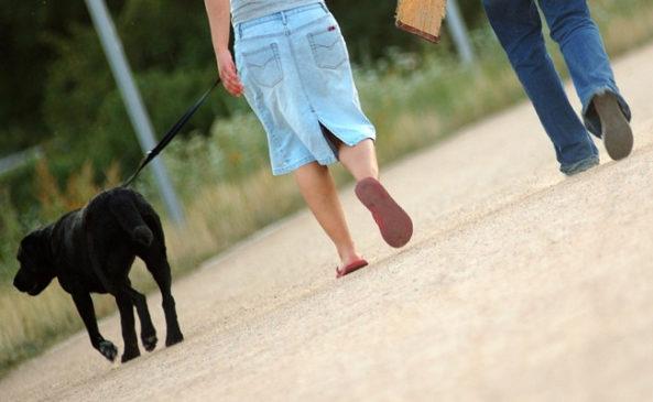 Прогулки для похудения
